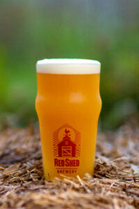 Otsego Golden Ale, Red Shed Brewing