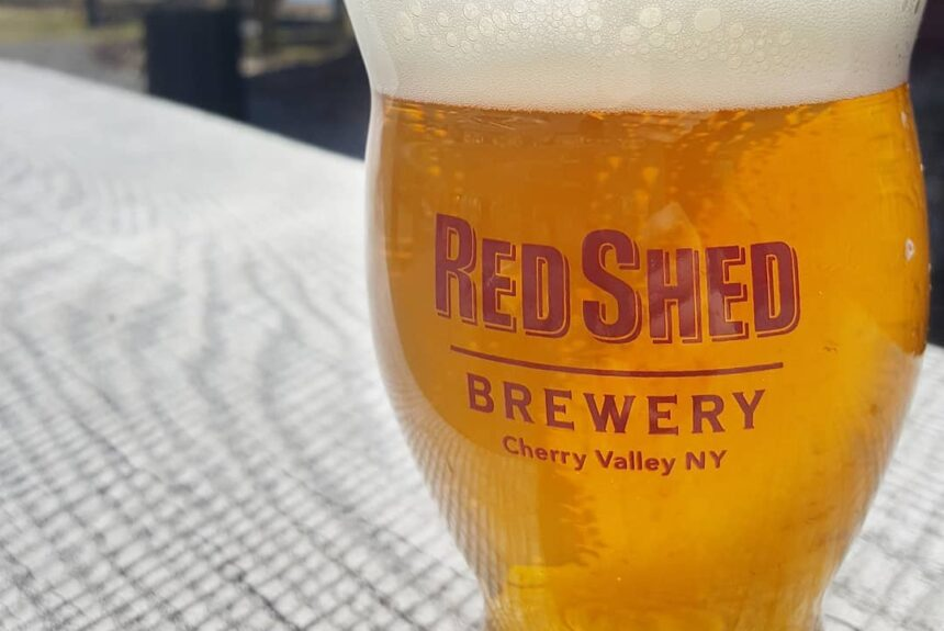 Introduction to: The Golden Ale, Red Shed Brewing