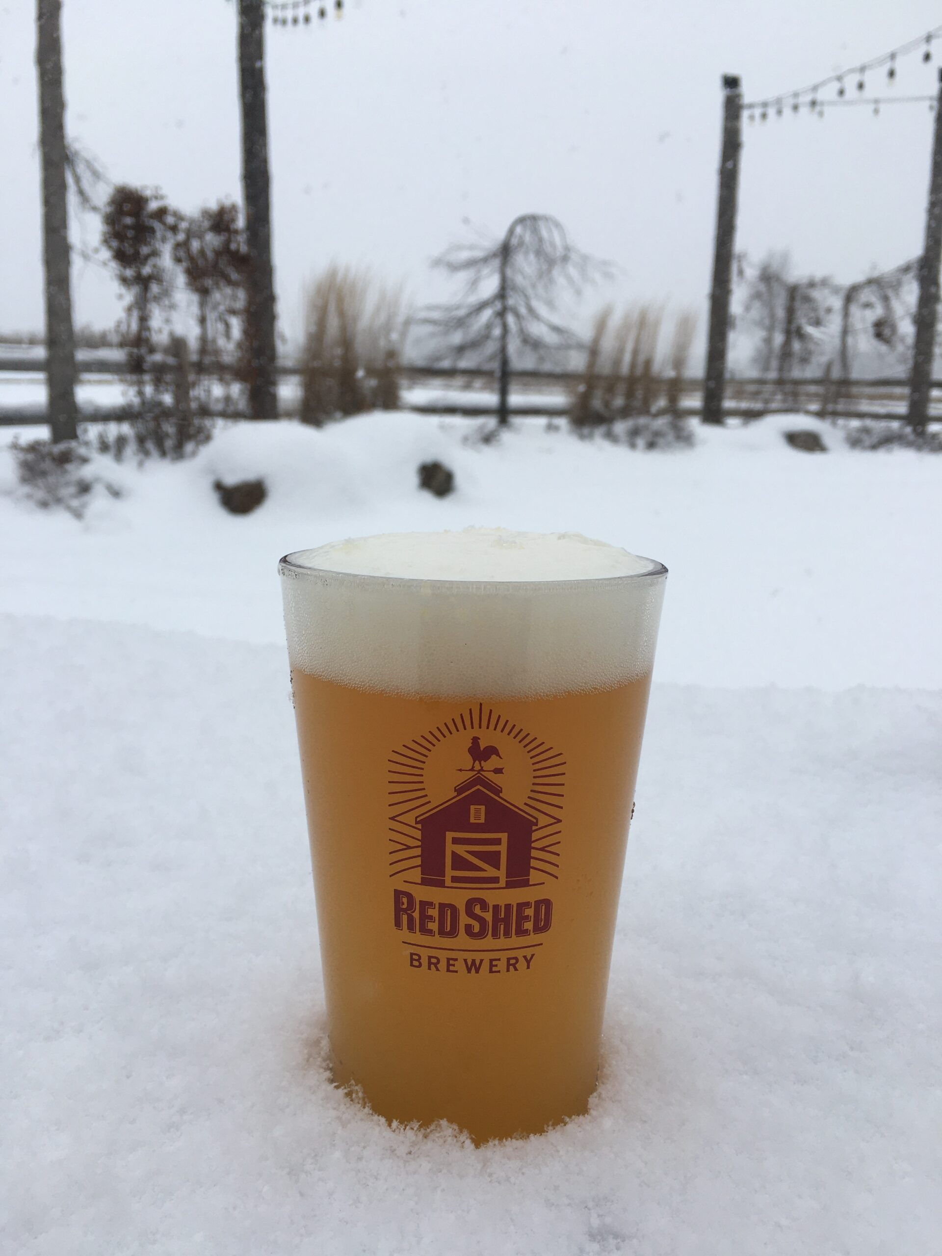 Cloudy Girl Hazy IPA, Red Shed Brewing