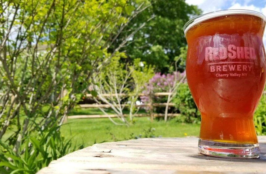 Introduction to: The Red Ale, Red Shed Brewing