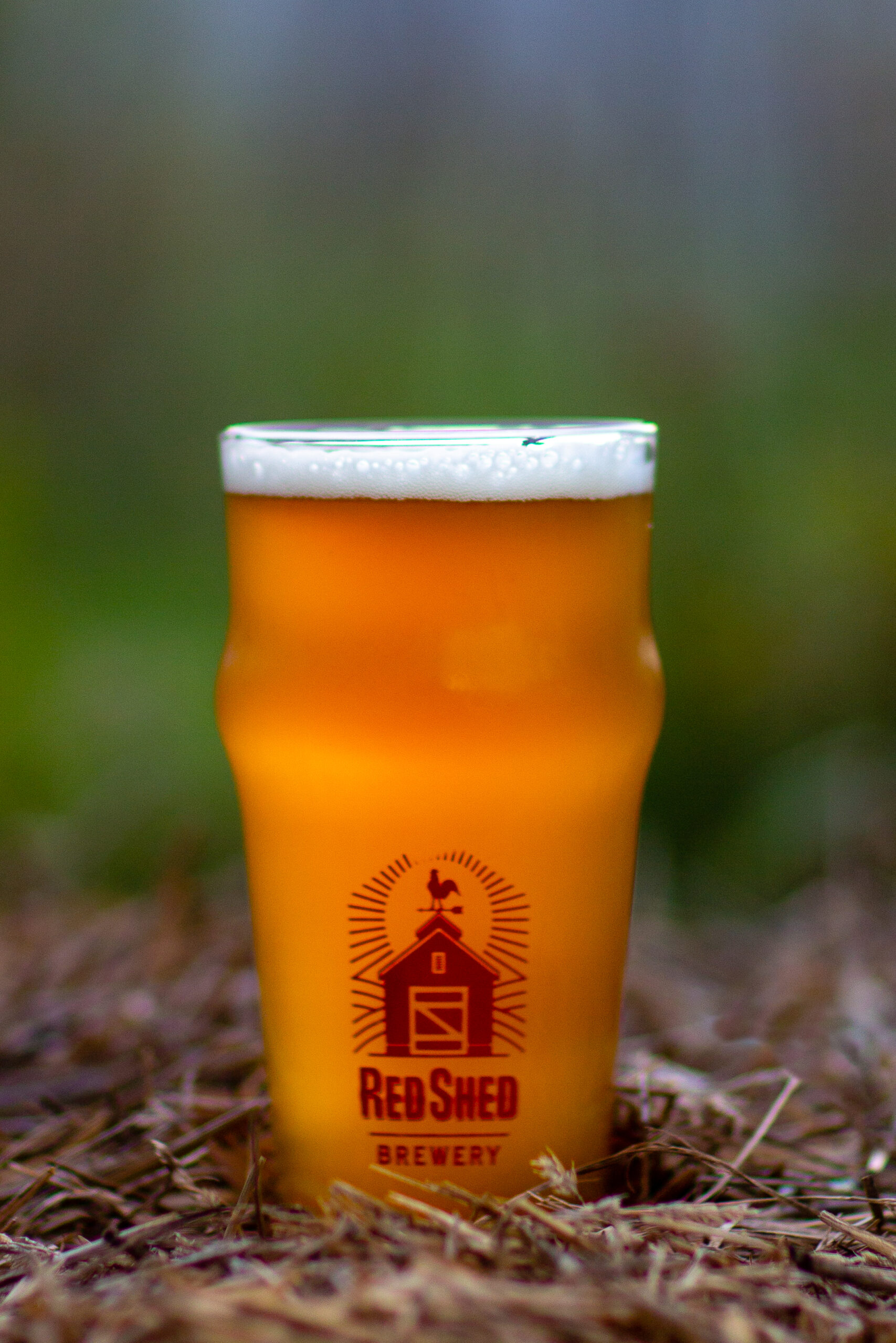 Loose Rooster Double IPA, Red Shed Brewing