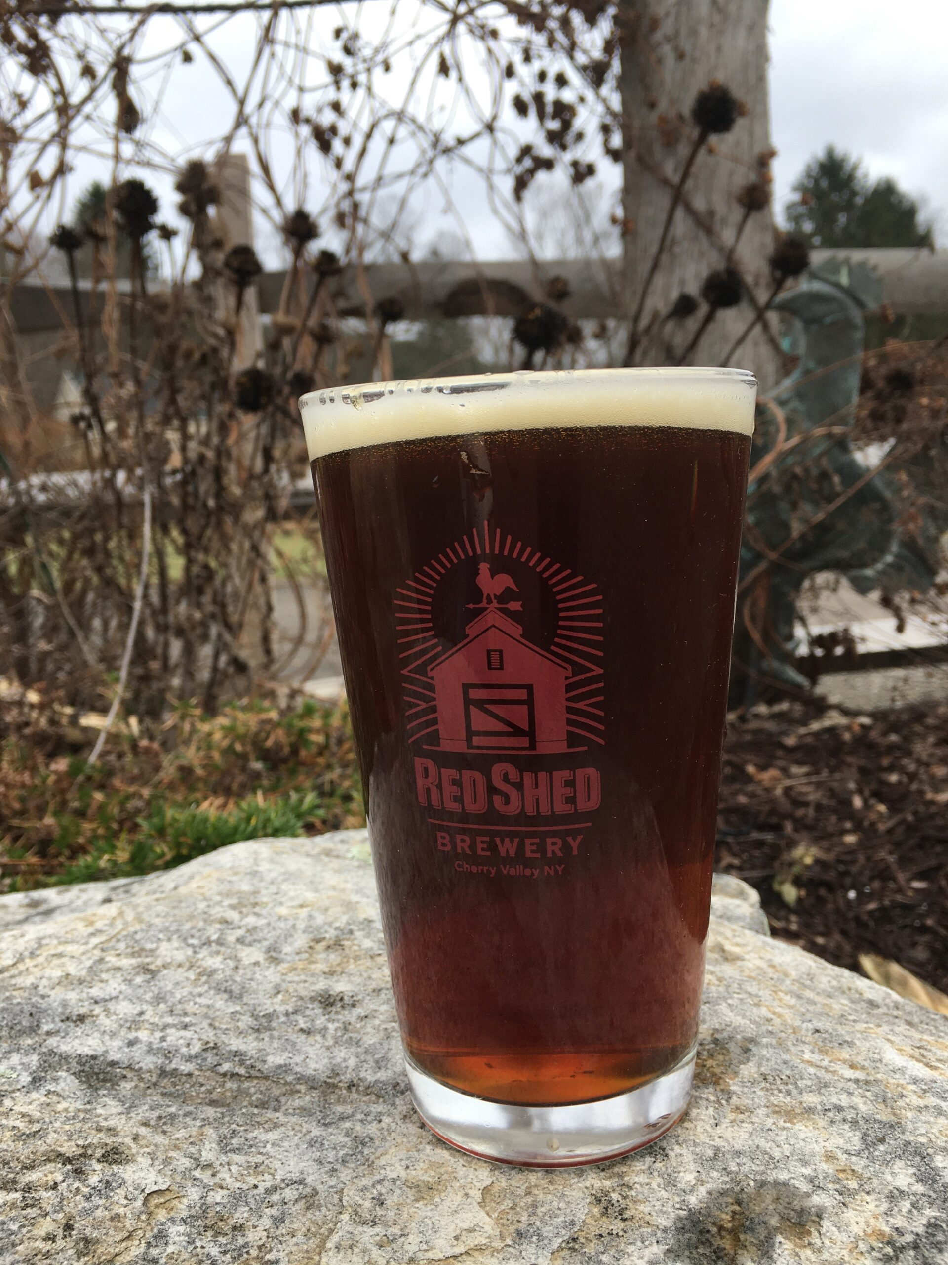 The Local Dark English Mild, Red Shed Brewing