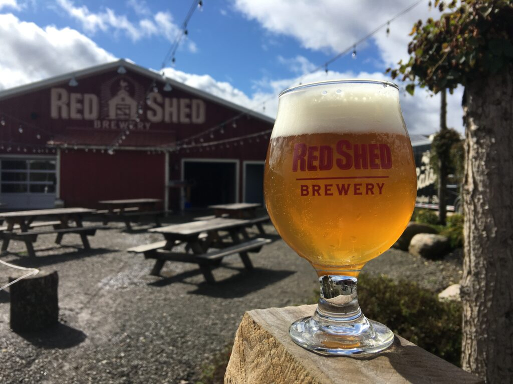 "Introduction to: The ""IPA"" or India Pale Ale, Red Shed Brewing"