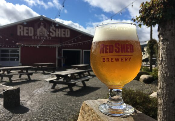 Blog, Red Shed Brewing
