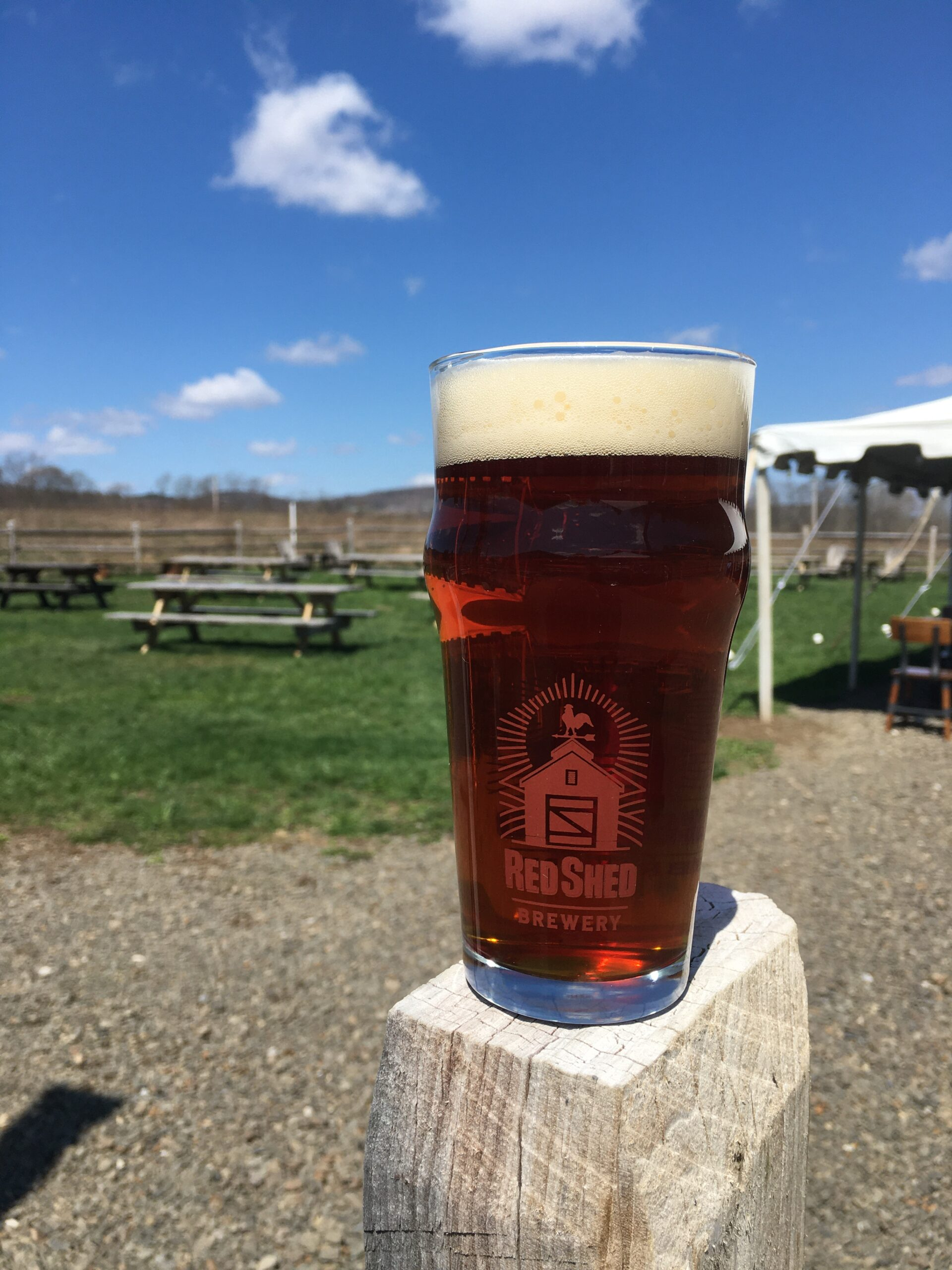 Barn Swallow Vienna Lager, Red Shed Brewing
